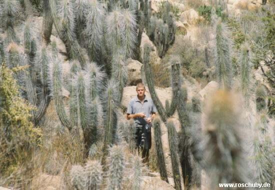 Monumento Nacional Valle del Encanto