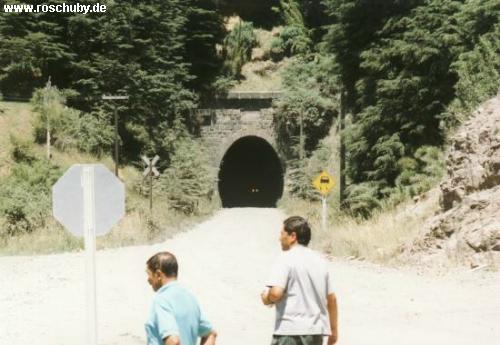 Túnel Las Raices / Lonquimay